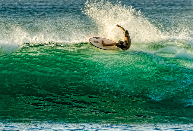 Hawaiian Surfer