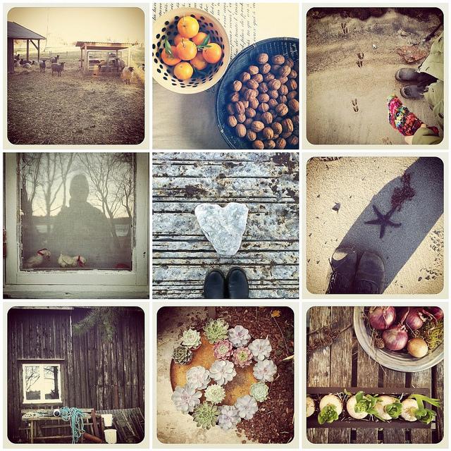 november_instagram