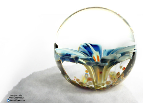 Clint Sharp - Blue Flower Marble on a Snow Ball