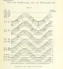 Image taken from page 209 of 'Bibliothek geographischer Handbücher. Herausgegeben von ... F. Ratzel'