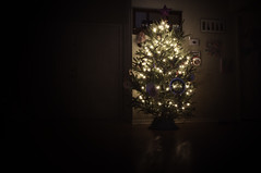 Our Christmas Tree 2013