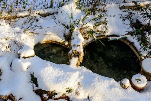 snow israel north naturelandscape haluts