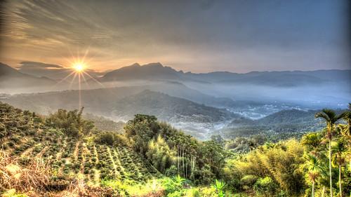 color fog sunrise canon landscape day taiwan greens 台灣 169 hdr 風景 sunflare nantou 日出 1635mm teafarm 廣興 雲霧 凍頂 canoneos5dmarkiii canon5dmarkiii pwpartlycloudy