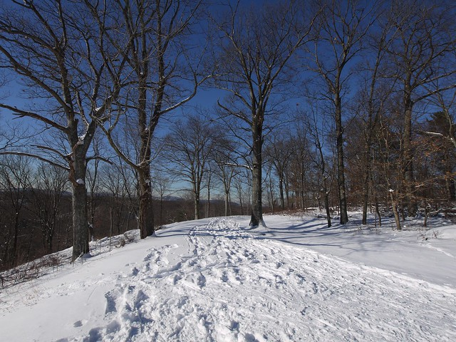 土, 2014-01-04 13:32 - Snow Shoeing at Rockefeller Park