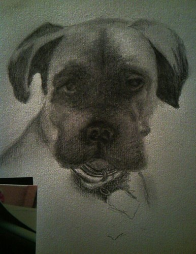 tyson pencil on paper by tracey morgan photography