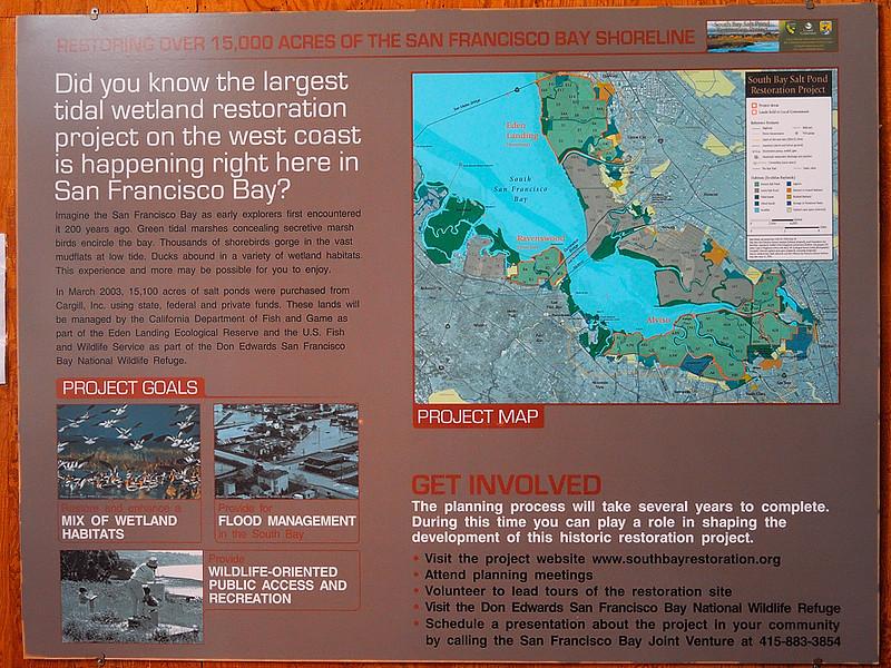 DSCN2859 Don Edwards San Francisco Bay National Wildlife Refuge