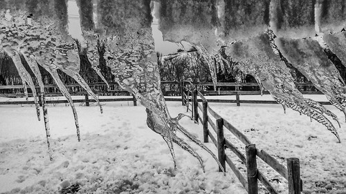Ice And Fences - Clarksburg, Maryland - February 16, 2014