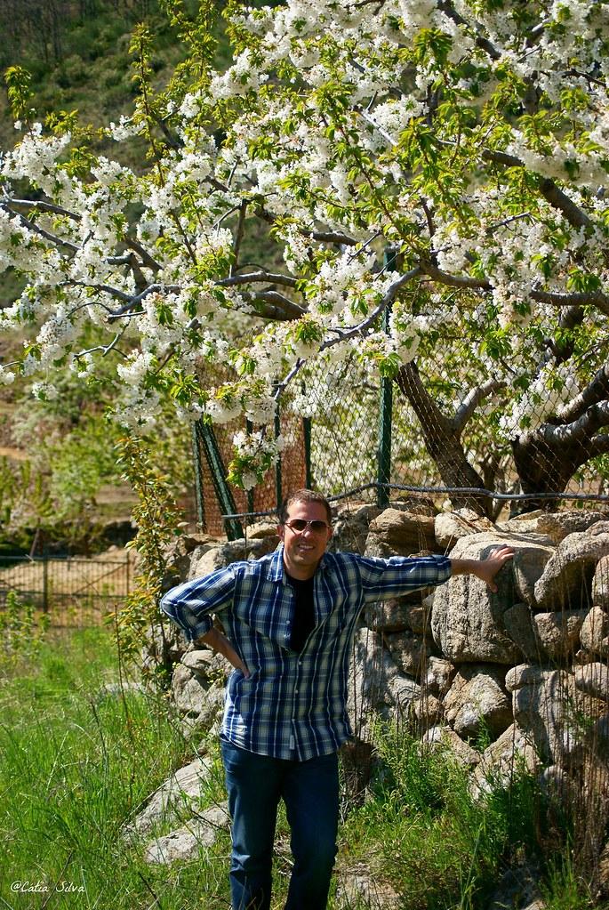 Extremadura-Valle del Jerte-Cerezo en Flor (10)
