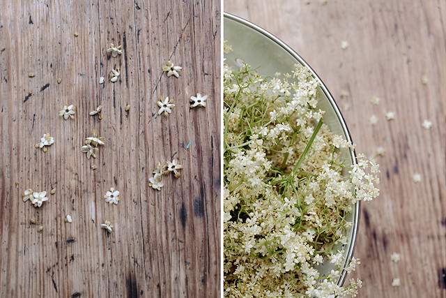LL_elderflower cordial_2