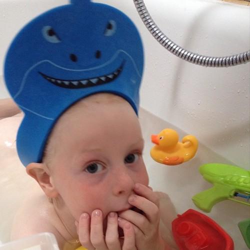 Dag 11: een haai in ons bad! Cc @helloblabloom