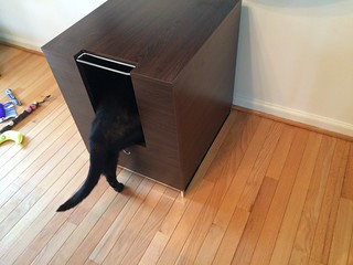 Modern Cat Designs product review