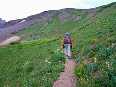 Gorgeous Trail in Yankee Boy Basin