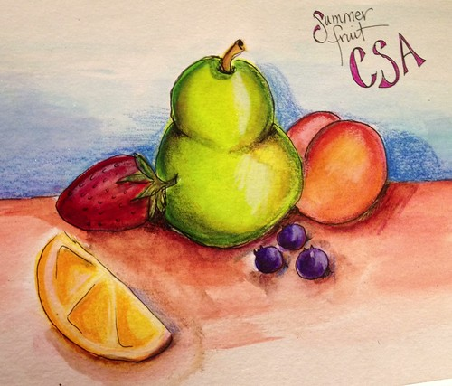 CSA Fruit - sketching exercise