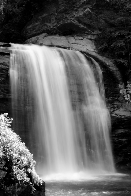 Looking Glass Falls B/W