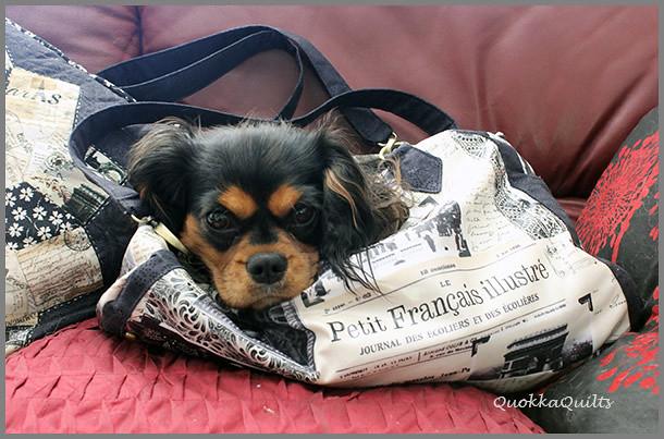 ParkLane Bag