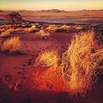 Sundowner in Namibia