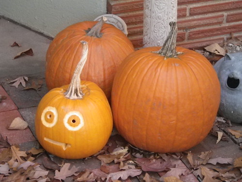 Pumpkins - Hilltop
