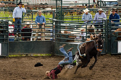 barrel racing(0.0), bull riding(0.0), animal sports(1.0), rodeo(1.0), western riding(1.0), event(1.0), equestrian sport(1.0), sports(1.0),
