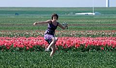 2010 04 18 Tulpen in Flevoland