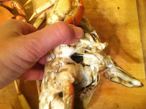 How to cook and clean fresh crab