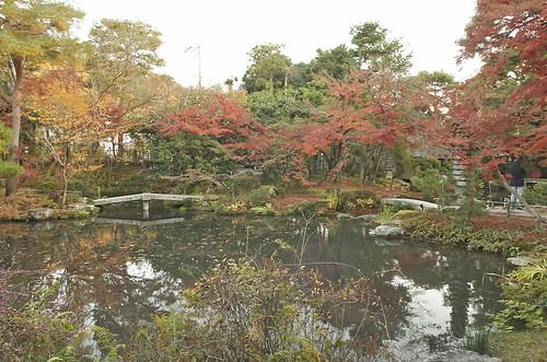 【写真】2013 紅葉 : 白沙村荘/2020-12-28/IMGP3704