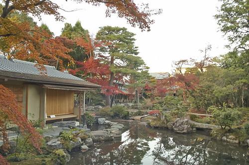【写真】紅葉 : 白沙村荘