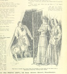 """British Library digitised image from page 259 of """"Thrilling Life Stories for the Masses"""""""