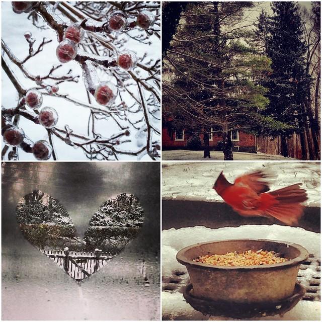 Snow days.