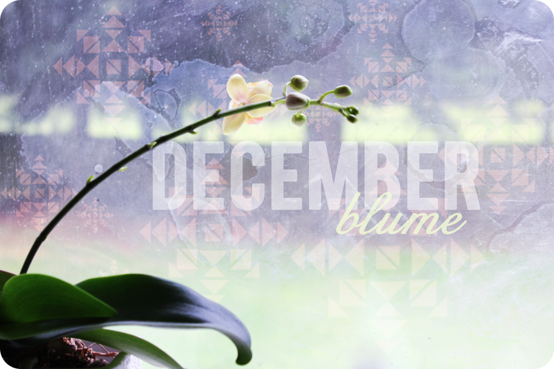 {dec 11th} christmas countdown mini | december blume