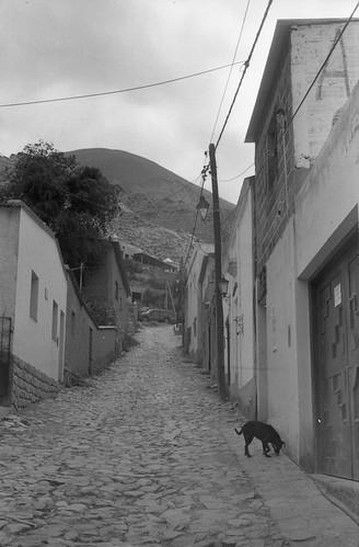 Autor: www.caminosypiedras.com