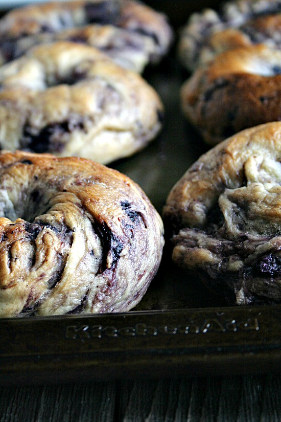 NY style Blueberry Bagels | heathersfrenchpress.com