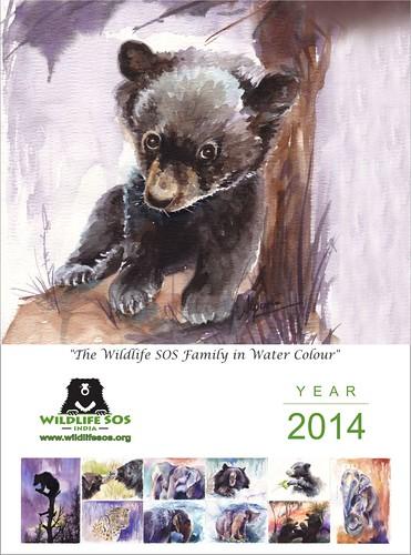 WSOS 2014 Calendar Cover page2