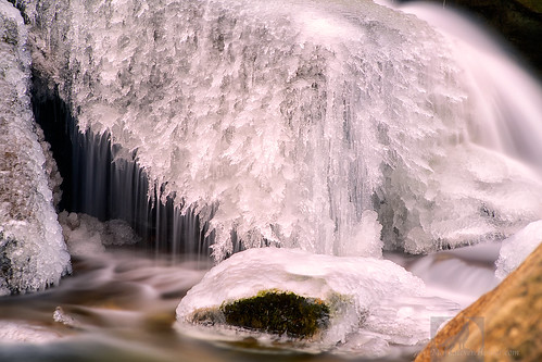 High Shoals Falls 1-25-2014 98