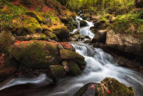 france cascade ruisseau midipyrénées pauselongue bagnèresdebigorre