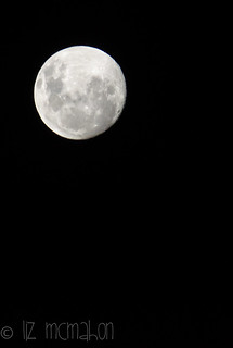 good night mr moon...