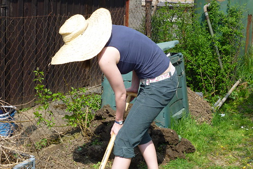 preparing for yet another compost heap