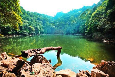 Fairy Pond 湖一景   photo credit The B-Tourist