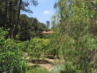 Gambar dari El Molino Viejo.