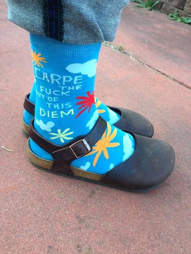Lucky Stirrup Socks