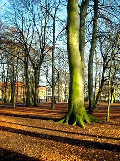 Rönneholmsparken, Malmö, Sweden