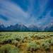 Small photo of Teton Prairie
