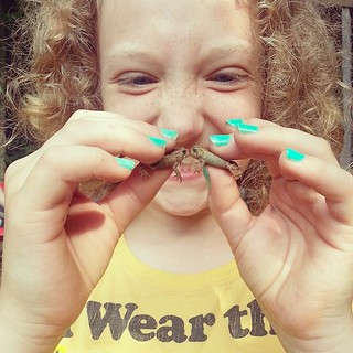 Arranging amphibious unions since 2014. #KissingFrogs #FrogsOfInstagram