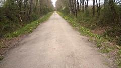 Sur la ligne de Bressuire à Neuville de Poitou