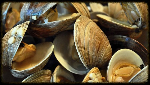 Grilled-Clams-Garlic-Butter-Sauce