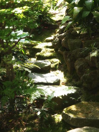 2013.07.17(P5312177_14-35mm_Sunlight