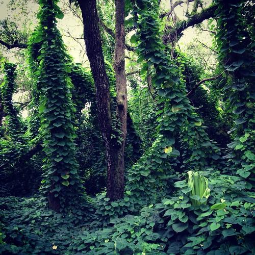 flickrtravelaward kendallhammockspark
