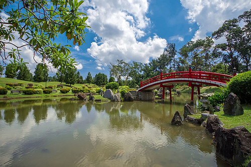 Japanese Garden, Singapore by Haryadi Be