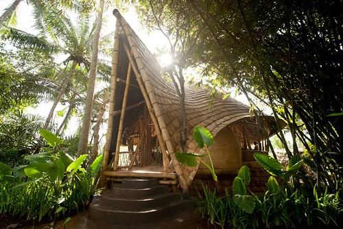 Bambus House v12