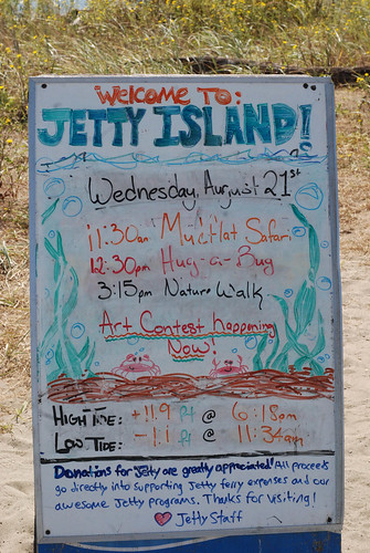 Jetty Island Activities