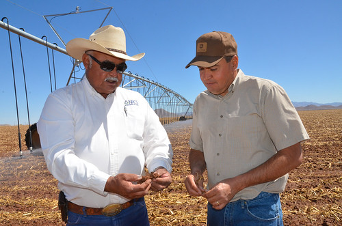 Newly installed pivot irrigation lines run behind Gerry Gonzalez, NRCS district conservationist in Douglas (left) and farmer Alfredo Zamora.